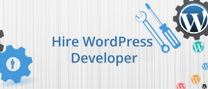 Important Factors to Look for in a Professional WordPress Website Developer?