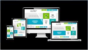 Website Design & Development, MN
